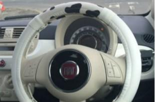 Fiat_Handle_USHI_650